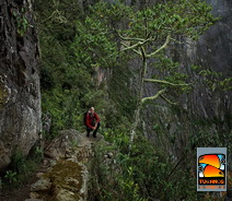 Inca Trail very beautiful scenery o f the cloud forest